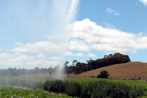 Farmers use irrigation to water crops in Hastings as grass in area turns brown and dry. Photo / HBT