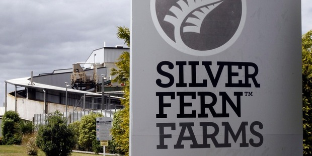 Silver Fern Farms meatworks at Dargaville. Photo / John Stone