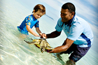 The kids can enjoying the wildlife at Vomo Island resort in Fiji.