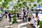 The terrace garden at Soul Bar & Bistro.