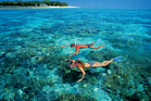 Snorkelling at Green Island is a drawcard for tourists in northern Queensland.