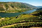 Douro Valley vinyard, Portugal. Photo / Thinkstock