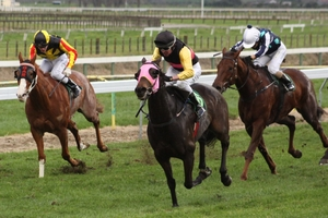 Little Alfie Brown, pink hood, will be hoping to add the Taumarunui Gold Cup to his Te Awamutu Cup success.