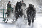 Sleigh rides across the snow are a popular family attraction at Devil's Thumb Ranch Resort. Photo / AP