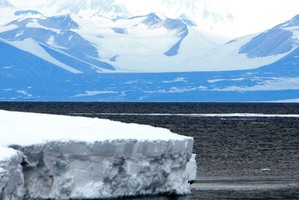 An area in the Ross Sea could become the world's largest marine reserve. Photo / NZPA