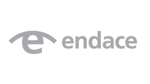 Advertising Feature Career13: Endace