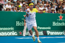 David Ferrer equalled Roy Emerson's record of four titles in Auckland with victory yesterday. Photo / NZ Herald