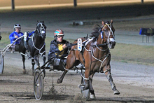 Sushi Sushi, driven by Greg Sugars, wins the A$50,000 Bendigo Pacing Cup on Saturday. Photo / Harness Racing Victoria