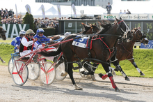 Terror To Love (left) wins the New Zealand Cup in November. Photo / Getty Images