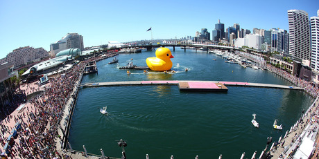 Dutch artist Florentijn Hofman's Giant Rubber Duck sails into Sydney Harbour. Photo / AP
