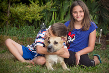 Kirsten and Jason Horscroft with their new dog Milly, who they adopted from the SPCA Auckland. Photo / NZ Herald