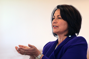 Hekia Parata has drawn strong criticism for her handling of education initiatives and problems. Photo /  Ben Fraser