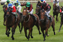 Postman's Daughter (green cap) is the class act in race 5 at Pukekohe Park today. Photo / APN
