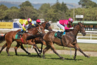 Jockeys were told the ridiculously slow pace was unacceptable. Photo / NZPA