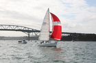 Weaker currents next week will improve prospects on the Waitemata. Photo / Geoff Thomas