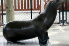 Rufus, one of Marineland's male sea lions, died in December.