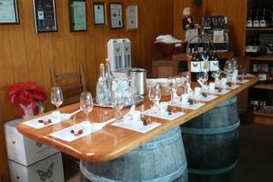 A tasting bar awaits you at Peacock Sky Vineyard, as does vineyard dog, Sky