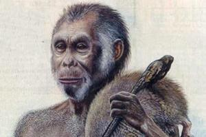 "An impression of what Homo floresiensis - described as human ""hobbits"" - might have looked like. Photo / supplied"