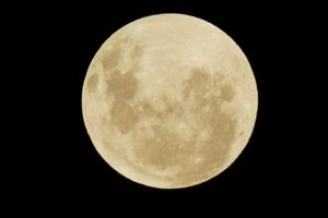 Humans seem to have a lunar body clock. Photo / Glenn Jeffrey