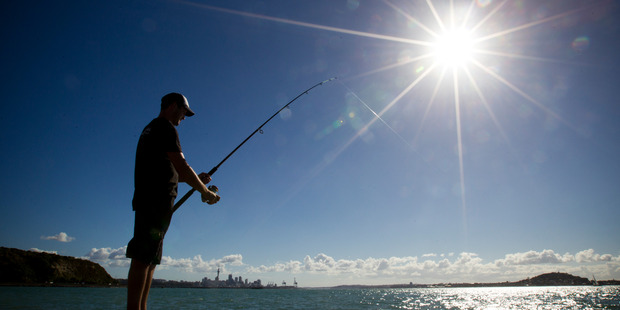 By the turn of the next century, Auckland will enjoy 40 warm days above 25C  each year. Photo / Greg Bowker