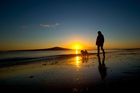 Rangitoto and three other islands are part of the Treaty deal. Photo / Brett Phibbs