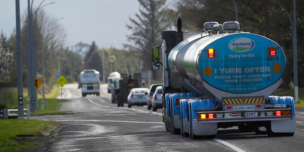 Loading Milk powder prices in Fonterra's dairy trade auction tomorrow will be a key barometer. Photo / Christine Cornege