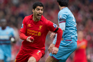 Liverpool's Luis Suarez. Photo / AP