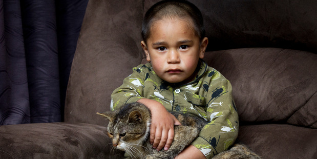 Paul Hunter, aged 3, finally gets his neighbour's tabby back where he wants him.  Photo / Sarah Ivey
