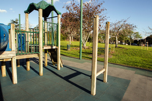 ACC figures show that most playground accidents happen on climbing frames, monkey bars and jungle gyms. Photo / Michael Craig