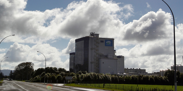 Fonterra is so big it can afford to sail on through these meltdowns without changing course. Photo / Christine Cornege