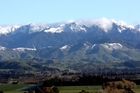 Deer, pigs and lots of birdlife can be found in the Tararuas, close to Levin. Fish are abundant off the coast.