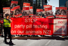 A Paw Justice march up Queen St against party pill testing. Photo / Sarah Ivey