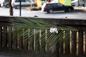 Tributes for Ashlee Edwards on the bridge above Waiarohia stream on Tarewa Rd. Photo / APN