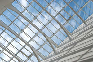 The student will be slapped with a large repair bill after falling through a skylight at an illegal rooftop party. Photo / Thinkstock