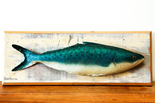 Latex fish designed by John Verryt. Photo / Babiche Martens