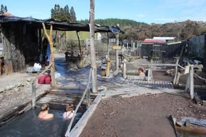 Waiariki Pools, also known as Ngawha Hot Springs, Northland. Photo / Estelle Sarney