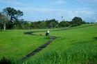 The vacant 4.2ha Wakakura Block was among land acquired by Ngati Whatua o Orakei. Photo / Dean Purcell