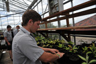 One school stepping up to offer solid agricultural teaching is St Paul's Collegiate in Hamilton.