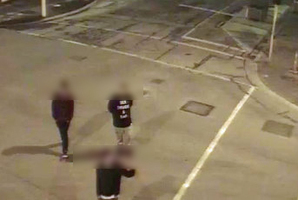 The taggers were caught on CCTV footage.