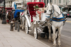 Should horse-drawn carriages be banned from Central Park in New York City? Photo / Thinkstock