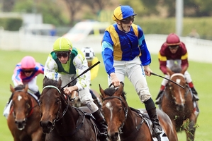 Murray Baker says James McDonald and It's A Dundeel (front, right) will have their work cut out from the No 1 barrier. Photo / Daily Telegraph
