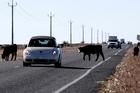 Huge spending is needed on rural roads. Photo / AP