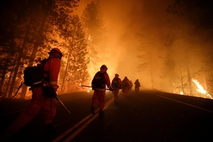 More than 4500 firefighters are battling the Rim Fire near Yosemite National Park, which has consumed 77,800 ha in California. Photo / AP