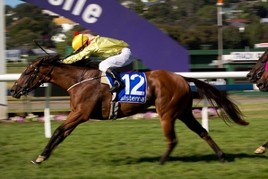 Fleur de Lune is among those expected to cope with a heavy track.