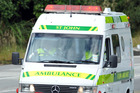 A toddler has received severe facial injuries after a dog attack in Moerewa.