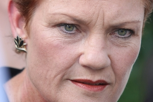 Some political analysts believe Pauline Hanson could have a chance of winning a Senate seat in New South Wales.