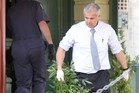 Police remove cannabis plants from the  central city building. Photo / BEVAN CONLEY 060913WCBRCCRI01