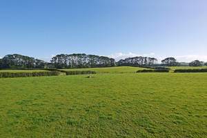 Council wants to provide 55,000 new houses south of Auckland.
