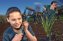 Primary school students planting trees as part of Conservation week. Photo / Andrew Warner