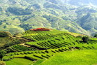 Vietnam's Muong Hoa Valley. Photo / Supplied